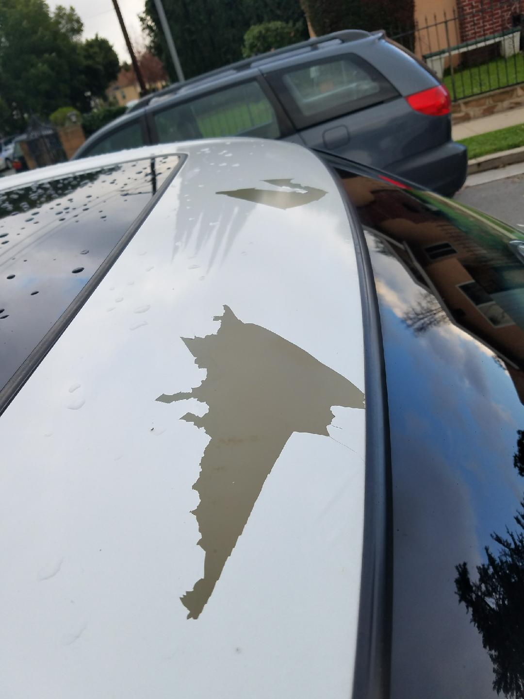 2012 White Pearl Paint Peeling Off Of Roof